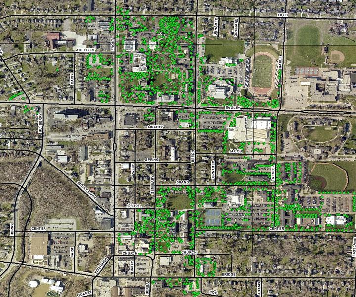 Fullmer Arboretum | Baldwin Wallace University