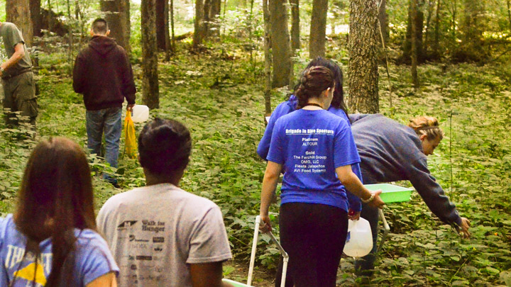 Biology Fieldwork in Forest