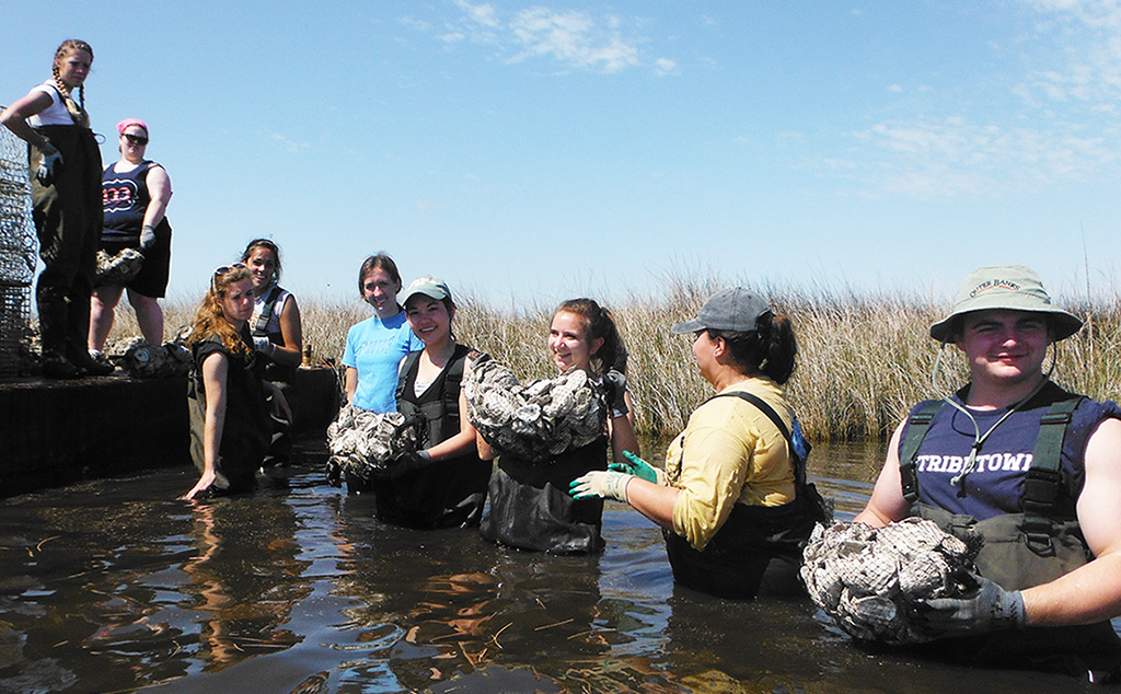 BW alternative spring break students help with coastal cleanup in North Carolina.