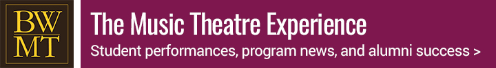 Music Theatre Experience banner