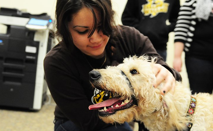 BW students work with therapy-dogs-in-training through K9 Partners, a partnership with the BW Department of Psychology and OhioGuidestone.