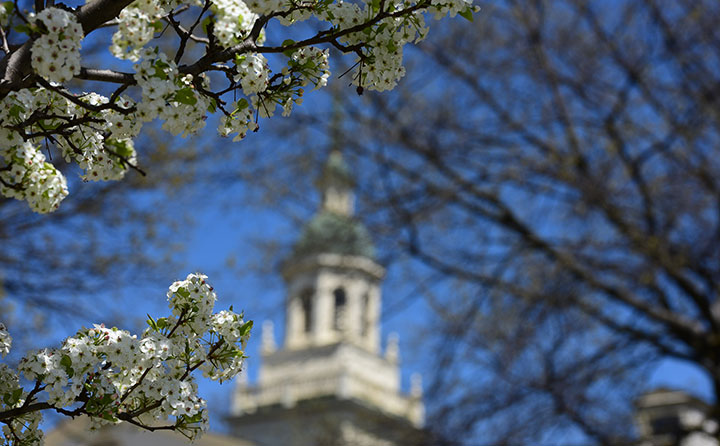 Baldwin Wallace University's Marting Tower peaks through flowering spring trees