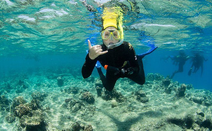 Criminal justice and political science major Amy Gersten snorkeling at the Great Barrier Reef in Australia.